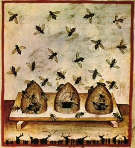 "Beekeeping from The Tacuinum (sometimes Taccuinum) Sanitatisis, a medieval handbook mainly on health, based on the Taqwim al‑sihha تقويم الصحة (""Maintenance of Health""), an eleventh-century Arab medical treatise by Ibn Butlan of Baghdad."
