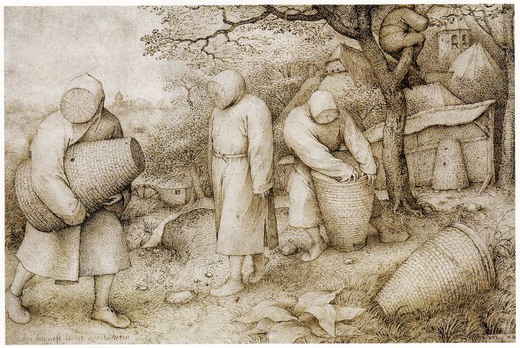 'The Beekeepers and the Birdnester' by Pieter Brueghel the Elder (1526/1530–1569)